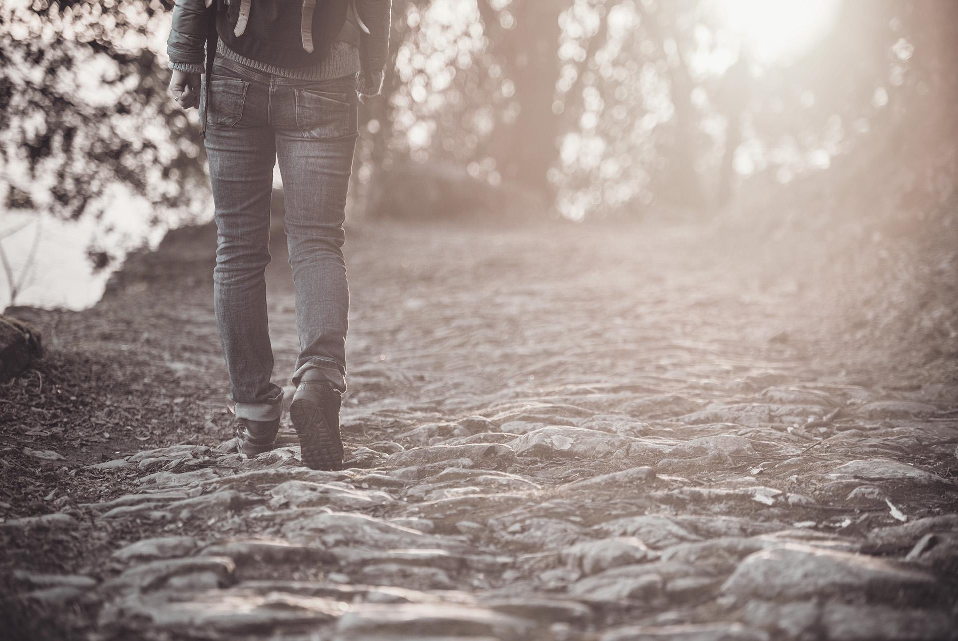 SPOT for all activiteit wandelen nijmegen